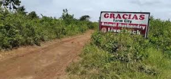 Farm Lands for You, Cash Crop Farming, Animal Husbandry, Epe, Lagos, Commercial Land for Sale