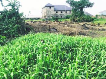One Plot of Land, Rumuolumeni By St. Johns, Off Wimpey, Rumolumeni, Port Harcourt, Rivers, Mixed-use Land for Sale