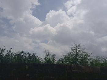 Full Plot of Land in Facing Major Command Road, White Command Via Meiran, Abule Egba, Agege, Lagos, Commercial Land for Sale