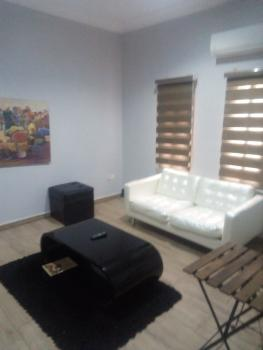 Serviced and Finished 1 Bedroom Apartment, Off Esther Adeleke Street, Lekki Phase 1, Lekki, Lagos, Self Contained (single Rooms) Short Let