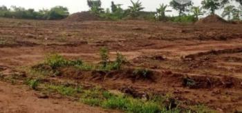 a Fenced Land Measuring 2550sqmts, Old Ikoyi, Ikoyi, Lagos, Mixed-use Land for Sale