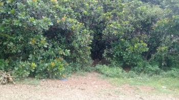 1000 Square Metres Estate Land, Guzape Hills, 3 Minutes Drive From Coza,asokoro Extension, Asokoro District, Abuja, Residential Land for Sale
