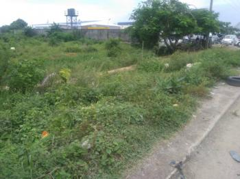 120plot Facing Express Before Eleko Junction Dry and Fenced Land, 120plot Facing Express Before Eleko Junction Dry and Fenced Land, Eleko, Ibeju Lekki, Lagos, Commercial Land for Sale