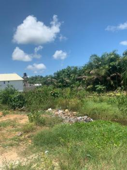 Sponsor Land  Location Ibeju Lekki Local Government. Back of Lekki Fre, Ogogoro, Ibeju Lekki, Lagos, Mixed-use Land for Sale