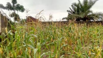 4 and Half Plot of Landed Properties, Adebayo/ Robiyan, Agbado, Ifo, Ogun, Mixed-use Land for Sale