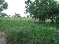 200 Hectares of Abuja Farmland with C of O for Sale!, Along Abuja-lokoja Road, Yangoji, Kwali, Gwagwalada, Abuja, Commercial Land for Sale