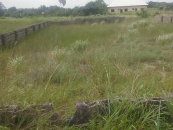 Owner Receipt and Registered Survey, Peace Estate Twins Fajia Supermarket Iba Road, Iba, Ojo, Lagos, Mixed-use Land for Sale