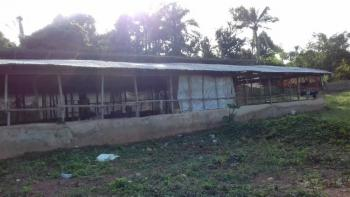 Poultry Farm with All Facilities, Arulogun Road Ojoo, Ojoo, Ibadan, Oyo, Commercial Land for Sale
