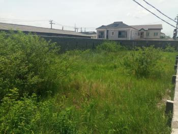 a Half Plot of Land, Ojodu Berger, Akiode, Ojodu, Lagos, Residential Land for Sale
