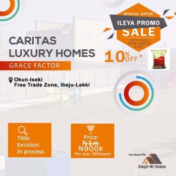 Land, Caritas Luxury Homes, Okun Iseki, Lekki Free Trade Zone, Lekki, Lagos, Land for Sale