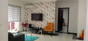 Luxury, Serviced and Fully Furnished One Bedroom Apartment, By Spa Road, Ikate Elegushi, Lekki, Lagos, Mini Flat Short Let