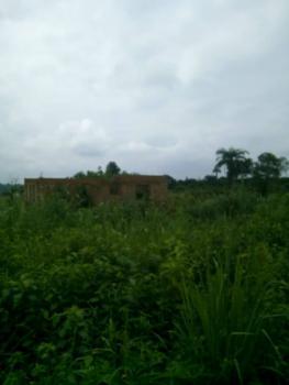 Dream Land for Residential Purposes, Obafemi Owode, Ogun, Residential Land for Sale