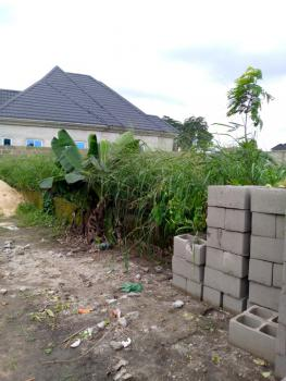 Standard 1 Plot of Land with Certificate of Occupancy (c of O), Shell Cooperative Neighborhood, Eneka, Port Harcourt, Rivers, Residential Land for Sale