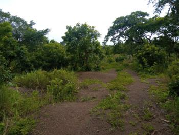 2 Plots of Land Available in a Scerene Environment, After Adoration Ministry, Emene, Enugu, Enugu, Mixed-use Land for Sale