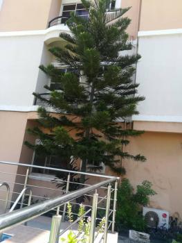 3 Bedroom Apartment, Off Palace Road, Oniru, Victoria Island (vi), Lagos, Flat for Rent