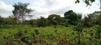 Land  Measuring  112 Hectares, Ilase Town., Obokun, Osun, Land for Sale