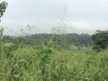 Acres/hectares of Land, Itokin/epe Road, Agbowa, Ikorodu, Lagos, Mixed-use Land for Sale