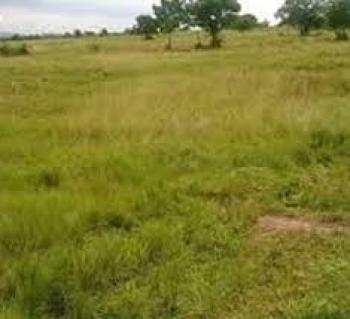 54.24 Hectares. C of O, Airport Road, Kyami, Abuja, Mixed-use Land for Sale