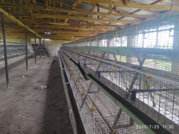 2 Hectares Livestock Farm, Keffi, Nasarawa, Factory for Sale