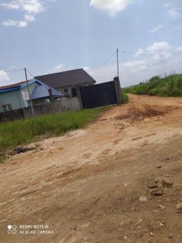 Land, 6th Avenue,close to Early Life School, Billionaires Garden, Festac, Amuwo Odofin, Lagos, Residential Land for Sale