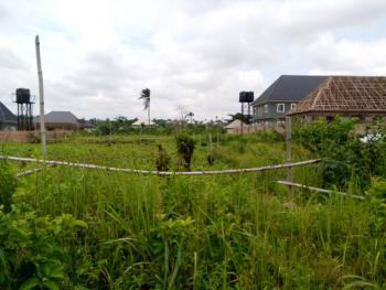 100/100 Plot of Land, Igbobi Okpanam., Oshimili South, Delta, Mixed-use Land for Sale