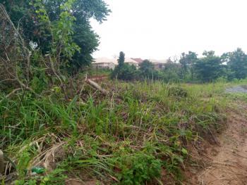 100/100 Plot of Land, Okpanam, Oshimili North, Delta, Mixed-use Land for Sale