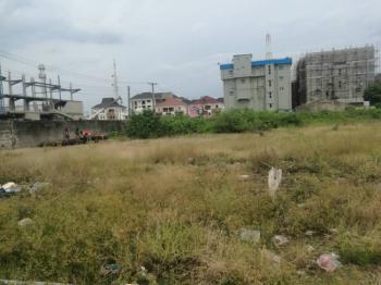 Bare Land, Adeola Odeku Street, Victoria Island (vi), Lagos, Mixed-use Land for Sale