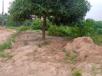 11/2 Plot of Land, Magada Onigbagbo, Magada, Ibafo, Ogun, Mixed-use Land for Sale