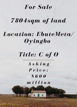 7804sqm of Land (morethan 13 Plots of Land), Oyingbo, Yaba, Lagos, Mixed-use Land for Sale