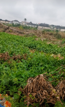 Sand Filled Plots of Land, Alagbole, Ojodu, Lagos, Residential Land for Sale