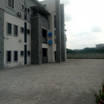 a Tastefully Finished Serviced Brand New 3 Bedroom Flat, Wuye, Abuja, Flat for Rent