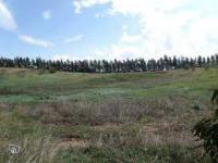 Land For Sale In Port Harcourt Rivers State, Rukpokwu, Port Harcourt, Rivers, Residential Land for Sale