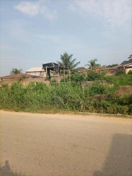 Over 1000sqm Land, Directly Opp. Tower Polytechnic, Ire Akari Estate, Oluyole Extension, Ibadan, Oyo, Residential Land for Sale