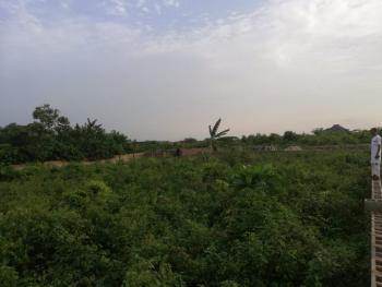 5.7 Acres of Land Available in a Strategic Location, Power Line, Oke Odan, Yewa South, Ogun, Land for Sale