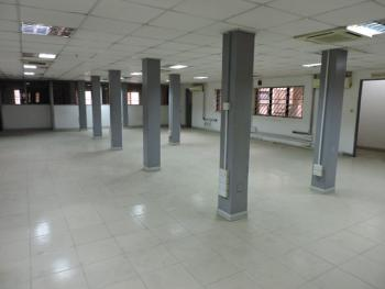 Open Plan Fully Serviced Office Space, Off Adeyemo Alakija Street, Victoria Island (vi), Lagos, Office Space for Rent