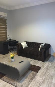 Luxury 1 Bedroom Close to Studio 24, Off Admiralty Road, Lekki Phase 1, Lekki, Lagos, Mini Flat Short Let