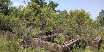 a Plot of Land with Foundation of a 3bed Bungalow, Mini Flat, Odore, Ilorin East, Kwara, Residential Land for Sale