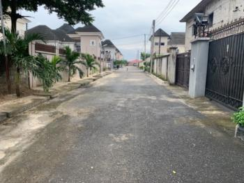 a Parcel of Land, at Oasis Gardens Rukpakwolusi New Layout Opposite Naf Harmony Estate, Port Harcourt, Rivers, Residential Land for Sale