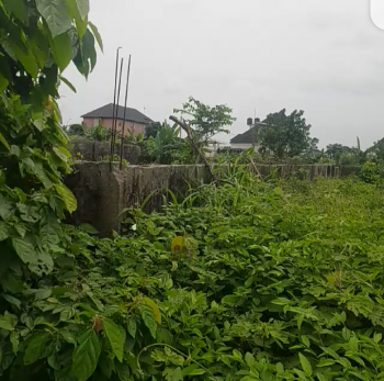 One Plot of Dry Rectangular Shaped Land Close to The Road, Less Than 5 Minutes Drive Off Obiri-ikwerre Bridge By Airport Road., Rumuosi, Port Harcourt, Rivers, Mixed-use Land for Sale