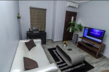 Luxury 1 Bedroom Apartment, Off Studio 24 Road, Lekki Phase 1, Lekki, Lagos, Mini Flat Short Let