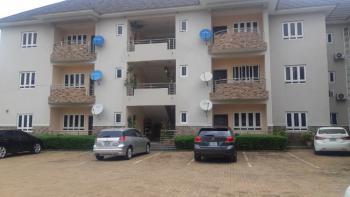 Top Notch 2 Bedroom Flat., Wuye District, Wuye, Abuja, Flat for Rent