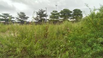 Plot Measuring 1084sqm Land Fenced Round and Gated, Expressway By Domino Pizza and Chicken Republic, Gbagada Phase 2, Gbagada, Lagos, Commercial Land for Sale