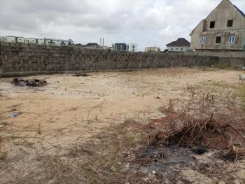 Fenced & Gated Dry Land of 565sqm, Off Kusenla Road, Ikate Elegushi, Lekki, Lagos, Residential Land for Sale