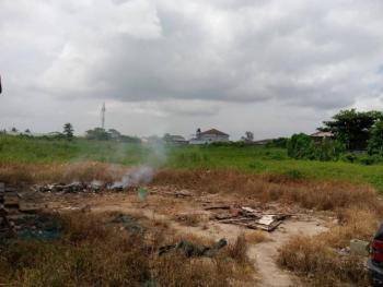 Viable Land Ideal for Residential Purposes, Off Emily Akinola Street, Akoka, Yaba, Lagos, Residential Land for Sale