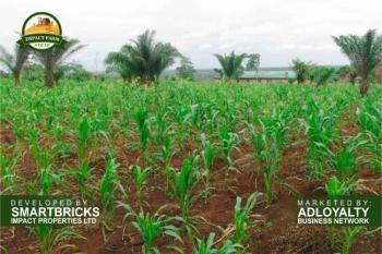 Land Comprehensively Insured By Leadway Assurance, Mokoloki Via Mowe - Ofada, Ibafo, Ogun, Commercial Land for Sale