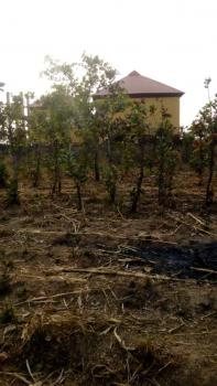 a Plot of Land, Zaudan Pazeri, Sabon Gari Layout, Dei-dei, Abuja, Residential Land for Sale