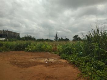 Attractive 10 Plots of Land with C of O Fenced with Security House, 4040 Concord Area., New Owerri, Owerri, Imo, Plaza / Complex / Mall for Sale