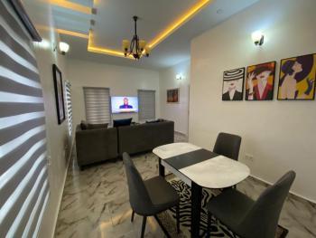 Beautifully Furnished, Chevron, Lekki Expressway, Lekki, Lagos, Detached Duplex Short Let