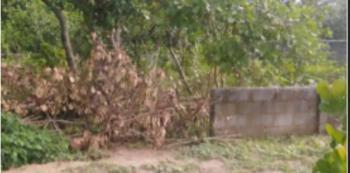 A1200 Sqm Land, Opposite International Community School, Off Citec Road, Dakibiyu, Abuja, Residential Land Joint Venture