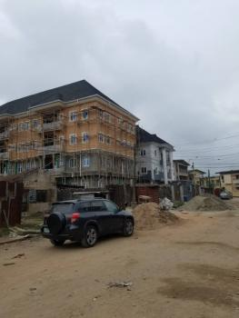 Brand New Spacious 2 Bedrooms Flat, Aguda, Surulere, Lagos, Flat for Rent